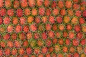 92783643-rambutan-fruit-related-to-lychee-gettyimages