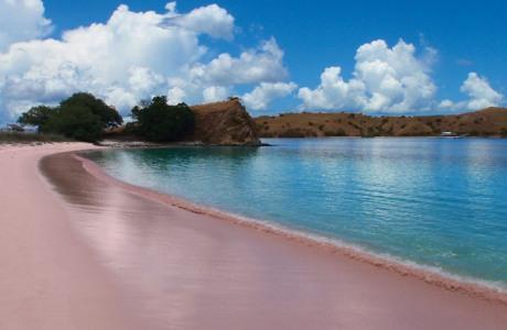 pantai+pink+komodo
