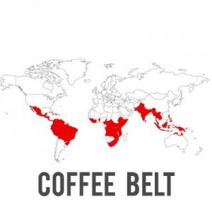 coffee_belt3_grande